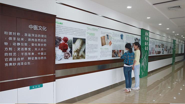 中医文化长廊